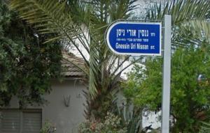 Улица имени Ури Нисана Гнесина, Холон (Израиль)