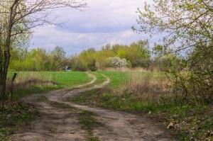 Дорога на Вяльки со станции Немолодва